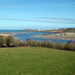 pet friendly holiday rental - pembrokeshire wales