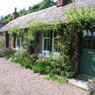 pet friendly cottages angus - littleton of airlie